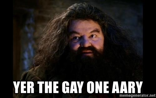 Yer A Wizard Harry Hagrid -  YeR the gay one aary
