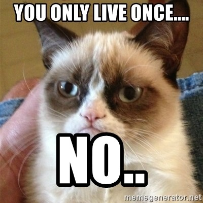 Grumpy Cat  - YOU ONLY LIVE ONCE.... NO..