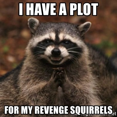 evil raccoon - I HAVE A PLOT FOR MY REVENGE SQUIRRELS
