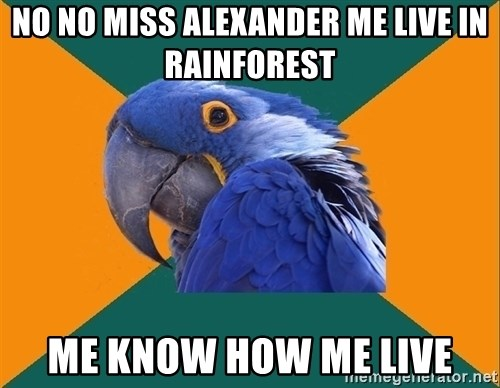Paranoid Parrot - No no miss Alexander me live in rainforest Me know how me lIve