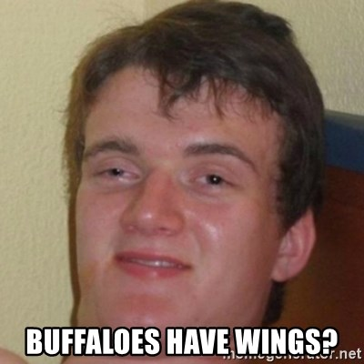 10guy -  Buffaloes have wings?