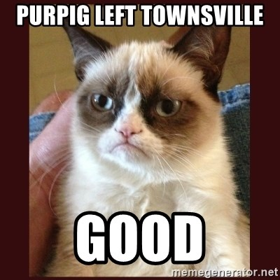 Tard the Grumpy Cat - purpig left townsville good