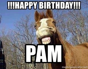 Horse - !!!HapPy BiRthDaY!!! Pam