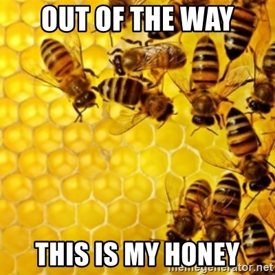 Honeybees - OUT OF THE WAY THIS IS MY HONEY