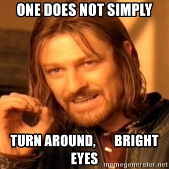 One Does Not Simply - one does not simply turn around,       bright eyes