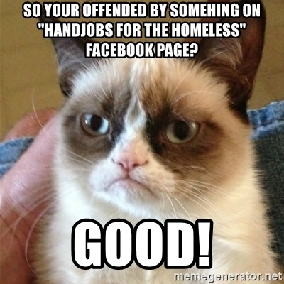 "Grumpy Cat  - So your offended by somehing on ""handjobs for the homeless"" facebook page? Good!"