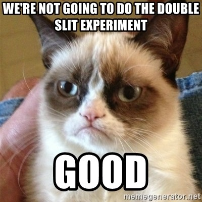 Grumpy Cat  - We're not going to do the double slit experiment Good