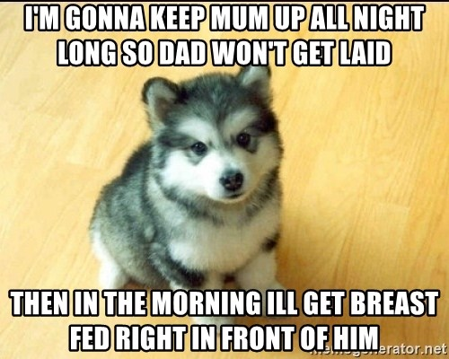 Baby Courage Wolf - I'M GONNA KEEP MUM UP ALL NIGHT LONG SO DAD WON'T GET LAID THEN IN THE MORNING ILL GET BREAST FED RIGHT IN FRONT OF HIM