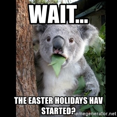 Koala can't believe it - Wait... The Easter holidays hav started?