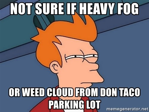 Futurama Fry - Not sure if heavy fog Or weed cloud from don taco parking lot
