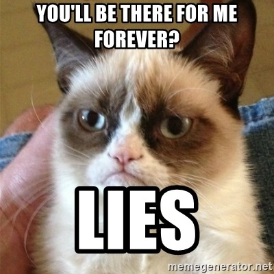 Grumpy Cat  - You'll be there for me forever? Lies