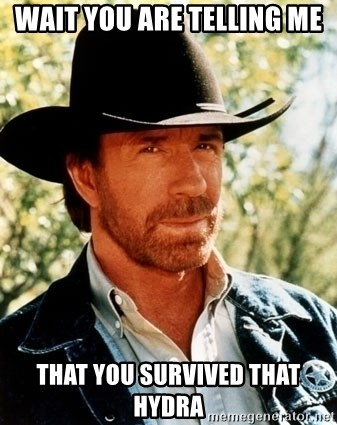 Brutal Chuck Norris - WAIT you are telling me that you survived that hydra