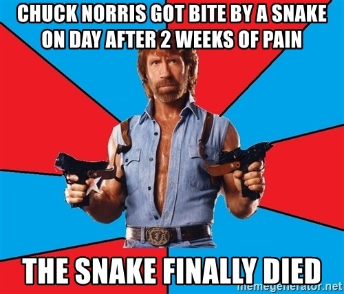 Chuck Norris  - CHUCK NORRIS GOT BITE BY A SNAKE ON DAY AFTER 2 WEEKS OF PAIN THE SNAKE FINALLY DIED