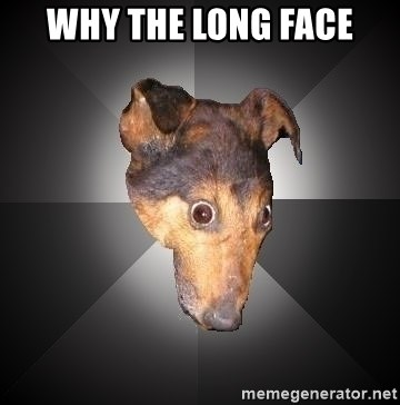Depression Dog - WHY THE LONG FACE