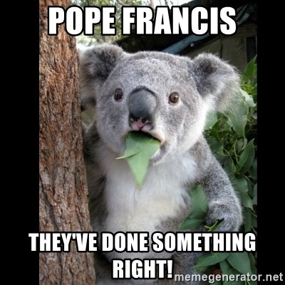 Koala can't believe it - POPE FRANCIS THEY'VE DONE SOMETHING RIGHT!