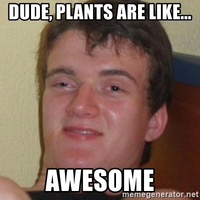 Stoner Guy - Dude, plants are like... Awesome