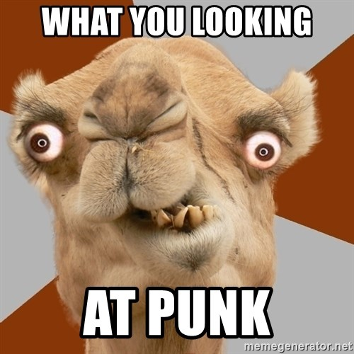 Crazy Camel lol - WHAT YOU LOOKING  AT PUNK