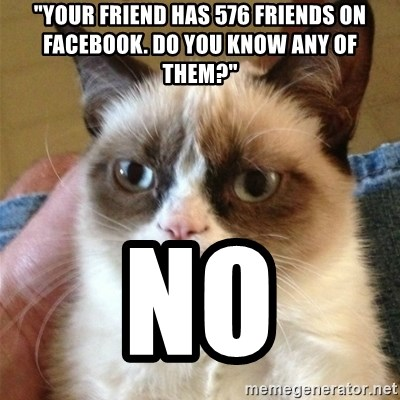 "Grumpy Cat  - ""your friend has 576 friends on facebook. do you know any of them?"" NO"