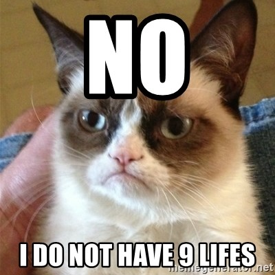Grumpy Cat  - NO I DO NOT HAVE 9 LIFES
