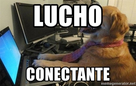 I have no idea what I'm doing - Dog with Tie - LUCHO  CONECTANTE