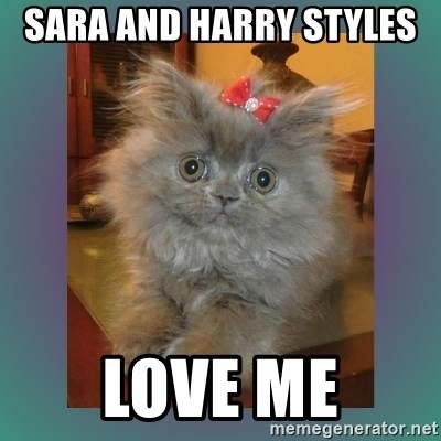 cute cat - SARA AND HARRY STYLES  LOVE ME
