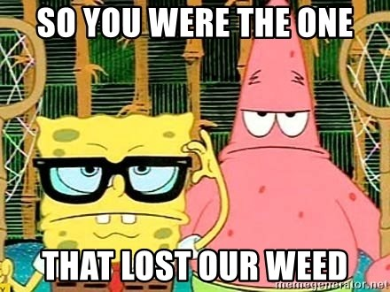 Serious Spongebob - so you were the one that lost our weed