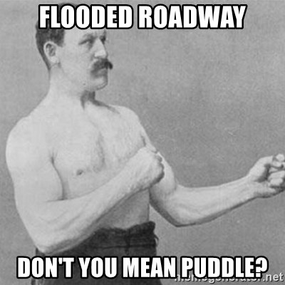 overly manly man - Flooded Roadway Don't you mean puddle?