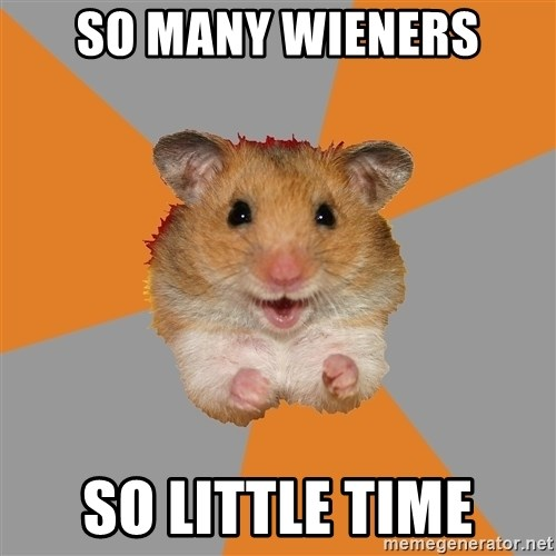 hamster seiyuulover - SO MANY WIENERS SO LITTLE TIME