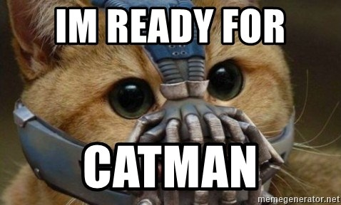 bane cat - IM READY FOR  CATMAN