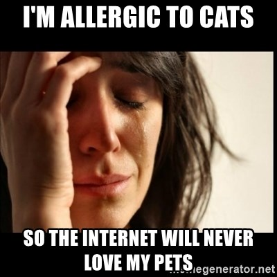 First World Problems - I'm allergic to cats so the internet will never love my pets