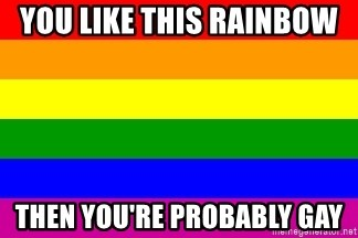 You're Probably Gay - YOU LIKE THIS RAINBOW  THEN YOU'RE PROBABLY GAY