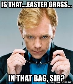 David Caruso CSI - Is that....easter grass... in that bag, sir?