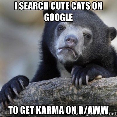 Confession Bear - I search cute cats on google to get karma on r/aww