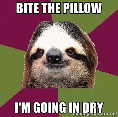 Just-Lazy-Sloth - BITE THE PILLOW I'M GOING IN DRY