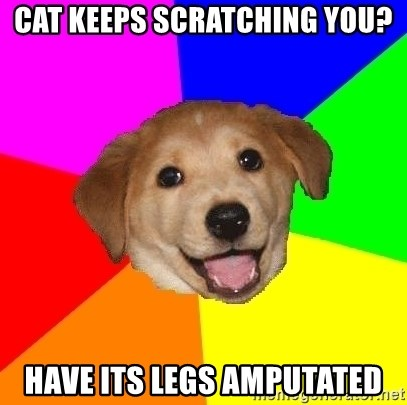 Advice Dog - cat keeps scratching you? have its legs amputated