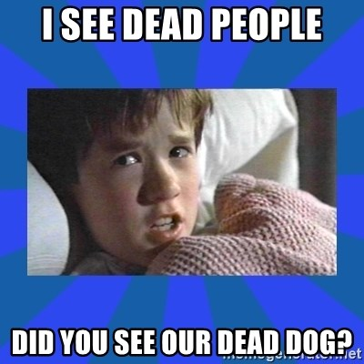 i see dead people - I SEE DEAD PEOPLE DID YOU SEE OUR DEAD DOG?