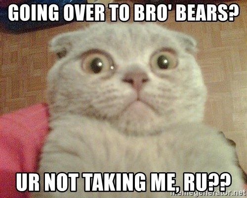 GEEZUS cat - Going over to Bro' Bears? UR Not Taking me, ru??