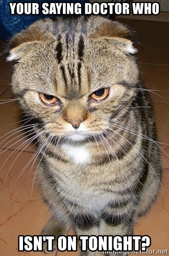 angry cat 2 - YOUR SAYING DOCTOR WHO ISN'T ON TONIGHT?