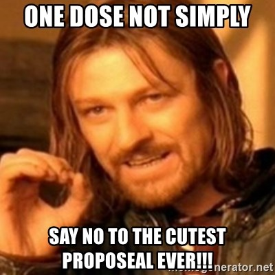 ODN - One dose not Simply  Say no to the cutest proposeal ever!!!