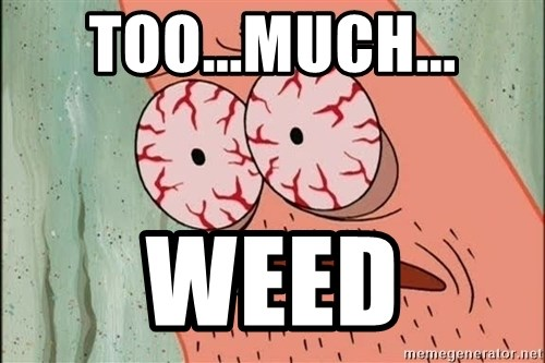 Stoned Patrick - Too...Much... WEED