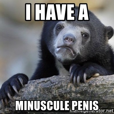 Confession Bear - i have a minuscule penis