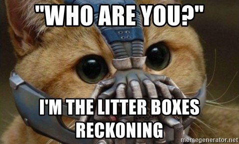 "bane cat - ""who are you?"" I'm the litter boxes reckoning"
