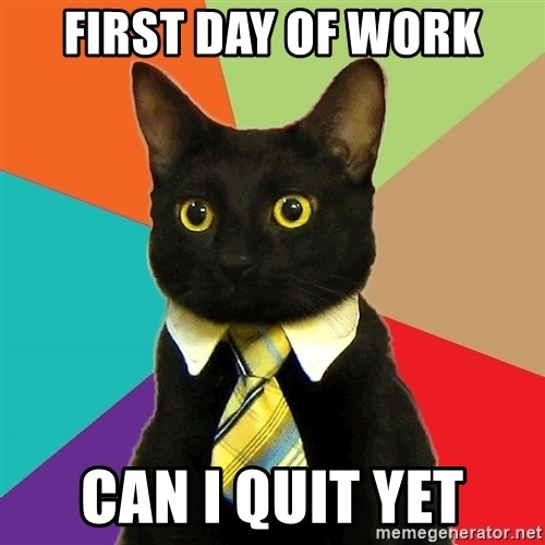 Business Cat - FIRST DAY OF WORK CAN I QUIT YET