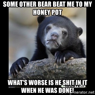 sad bear - some other bear beat me to my honey pot what's worse is he shit in it when he was done!