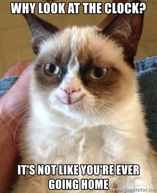 Happy Grumpy Cat 2 - Why look at the clocK? It's not like you're ever going home