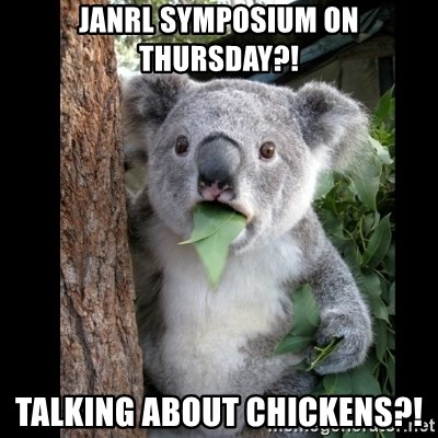 Koala can't believe it - Janrl symposium on thursday?! talking about chickens?!