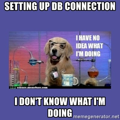 I don't know what i'm doing! dog - setting up DB connection I don't know what i'm doing