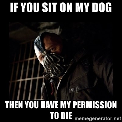 Bane Meme - If you Sit on my dog Then you have my permission to Die