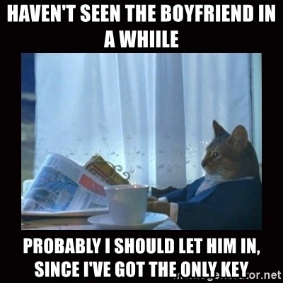 i should buy a boat cat - Haven't seen the boyfriend in a whiile Probably i should let hiM in, since i've got the only key