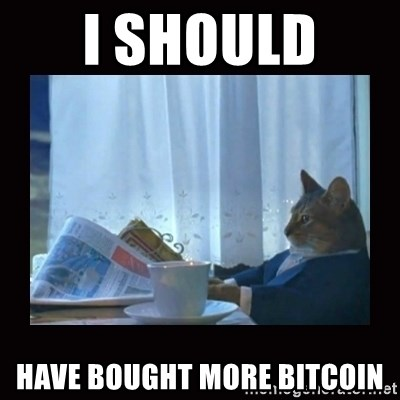 i should buy a boat cat - I should  have bought more bitcoin